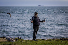 The Pigeon Whisperer (Paul Rioux) Tags: person human random candid man avian bird birds pigeons water cloverpoint victoria bc real life prioux
