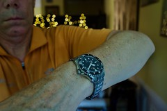 RCS08072 (CraigShipp.com Photos - Events / People / Places) Tags: grandseiko sbga231 wrist diver titanium