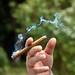Le petit cigare
