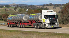 CHEMTRANS Scania Climb (1/2) (Jungle Jack Movements (ferroequinologist)) Tags: pair scania cabover b double tandem drive tri axle jerrawa yass hume highway freeway sydney melbourne tankers tank hp horsepower big rig haul haulage freight trucker transport carry delivery bulk lorry hgv wagon road nose semi trailer deliver cargo interstate articulated vehicle load freighter ship move roll motor engine power teamster truck tractor prime mover diesel injected driver cab cabin loud rumble beast wheel exhaust grunt chemtrans