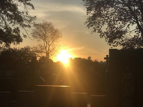 Sunset from São Paulo Cemetery, Bairro Pinheiros, Brazil.