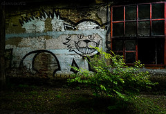Freaky cat - DSC8826-3 (cleansurf2 Urbex) Tags: cat urbex texture brick window red green grime graffiti dark shadow building black background architecture a7ii artistic age 1635mm wideangle light factory 2k hires lowkey