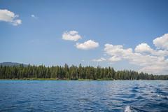 DSC03012 (KayOne73) Tags: sony a7iii rokinon samyang 35mm f 14 prime lens lake tahoe city