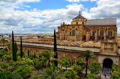 ¡Mira la Mezquida! (encantadissima) Tags: cordoba andalusia spagna cityline panorama tetti losjardinesdelnaranjo cattedrale