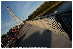 Most Świętokrzyski   Holy Cross Bridge (Dit is Suzanne) Tags: 06092016 img2515 polen poland польша варшава warsaw warschau ©ditissuzanne canoneos40d sigma18250mm13563hsm wandeling walk прогулка nazomer indiansummer бабьелето rivier river река wisła vistula weichsel висла brug bridge мост świętokrzyskibridge mostświętokrzyski holycrossbridge powiśle ludwikanitschowa mermaidstatue gunmetal warszawskasyrenka pomniksyrenki mermaidofwarsaw krystynakrahelska варшавскаясирена варшавскаясиренананабережнойвислы лудовиканичова warsawsiren 聖十字橋 свентокшиськийміст