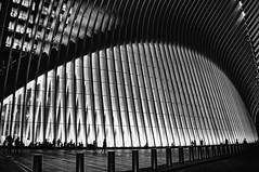 Station (nyperson) Tags: newyorkcity blackandwhite architecture calatrava path night worldtradecenter
