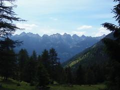 P7085421 (btristan) Tags: valdifiemme predazzo trentino lagorai gardonè mountain trees