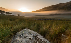 The Mist Of Mymbyr (Rob Pitt) Tags: wales north road trip mountain cymru rob pitt photography snowdonia landscape a7rii sony grass field sky camping 1740 f4 l mist morning sunrise capel curig animal water sunset fog tree lynnau mymbyr