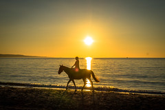 A young woman enjoying a sunset horse ride.