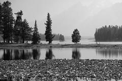 Grand Teton National Park (musical photo man) Tags: grandtetonnationalpark wyoming fujifilm