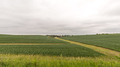 IMG_7018 (inarges) Tags: iowa springbrook