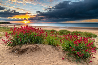 Red sunrise.