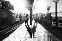 Reflections & Shadows - South Ruislip (Luke Agbaimoni (last rounds)) Tags: london londonunderground blackandwhite shadows streetphotography