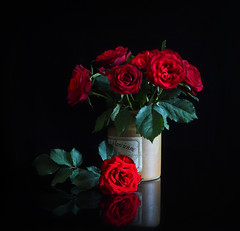 Rose bouquet (Smiffy'37) Tags: roses flowers stilllife red blackbackground bouquet