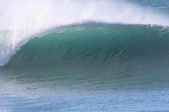 2018.07.15.08.44.38-Tama perfection-001 (www.davidmolloyphotography.com) Tags: bodysurf bodysurfing bodysurfer bronte sydney newsouthwales australia surf surfing wave waves