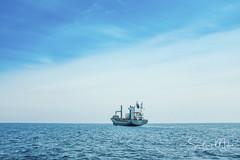 BDMALTE-SandMulas-9354 (IMAJIM_SandMulas) Tags: malta malte sandmulas valetta ocean sea blue yellow