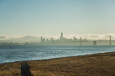 can't get there from here (pbo31) Tags: bayarea eastbay alamedacounty california nikon d810 color evening july summer boury pbo31 sanfrancisco sunset baybridge 80 bridge bay silhouette portofoakland oakland fog salesforce skyline over urban city