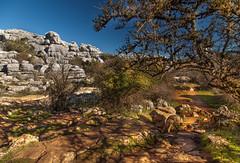 El Torcal de Antequera, Andalusia, Spain (luciali) Tags: parco andalusia spain mountain natura sentiero paesaggio roccia rock