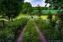 Country Walk (James Neeley) Tags: landscape uk england amersham jamesneeley