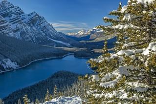 Peyto Lake (Banff, Alberta, Canada)