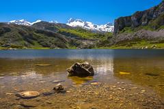 Ercina lake (PiTiS ¬~) Tags: ercina covadonga lake lago landscape paisaje water agua mountain monte montaña snow nieve verde green mendiak asturias asturies