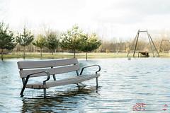 Primavera lluviosa (PeRRo_RoJo®) Tags: agua parque sony a77ii inundación naturaleza paisaje 77ii alpha dof disaster ilca77m2 landscape nature slt sonya77ii water aqua depthoffield ávila castillayleón españa es