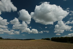 summer sky, hot air, zero rain in Northern Germany
