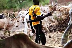 Breaking News: Senate asks federal government to give loan to herdsmen to exterblish rances in every state - Islamization agenda in another dimention (thisdaynews) Tags: establishranches federalgovernment give herdsmen lowinterestloans senate