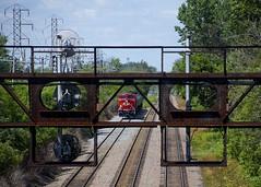 Framed (Michael Berry Railfan) Tags: cp8006 cp9526 cp canadianpacific ac44cwm ge generalelectric cp650 train ethanoltrain montreal adirondacksub