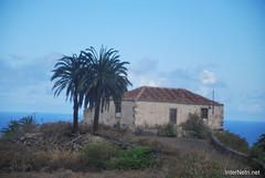 Ікод-де-лос-Вінос, Тенеріфе, Канарські острови  InterNetri  147