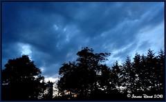 Scherenschnitt (Jolanda Donné) Tags: blauestunde bäume wolken frauenfeld zuckerfabrikfrauenfeld sonyf5121 thurgau schweiz