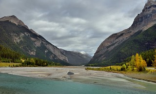 Mountains on Both Sides to Take in a Valley and Kicking Horse River (Yoho National Park)