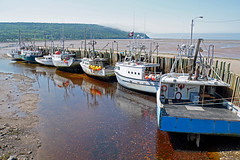 DSC00732 - Advocate Harbour Wharf (archer10 (Dennis) 142M Views) Tags: sony a6300 ilce6300 18200mm 1650mm mirrorless free freepicture archer10 dennis jarvis dennisgjarvis dennisjarvis iamcanadian novascotia canada glooscaptrail fundy advocate harbour wharf boats low tide fishing appleriver buoys