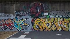 IMGP5478 The Wolf (Claudio e Lucia Images around the world) Tags: via predil lambrate milano murale murales graffito graffiti street streetart muro wall ferrovia railway pentax pentaxk3ii sigma sigma1020 pentaxart sigmaart city the wolf