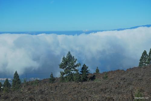Понад хмарами, Тенеріфе, Канарські острови  InterNetri  007