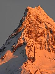 Volcán Puntiagudo (Mono Andes) Tags: andes chile chilecentral volcánpuntiagudo volcán volcano volcanoe parquenacional parquenacionalvicentepérezrosales amanecer regióndeloslagos