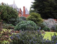 Garden at Caloola (Lesley A Butler) Tags: australia caloola garden sunbury victoria