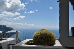 Ravello, Italy. (Manoo Mistry) Tags: ravello italy europe nikon nikond5500 tamron tamron18270mmzoomlens landscape sky cactus