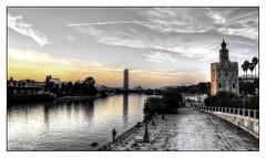 Sevilla (mgarciac1965) Tags: torredeloro sevilla