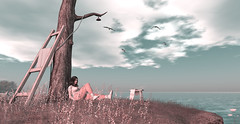 #25 (beautifuloval) Tags: foxcity tram revoul shinyshabby fashion blog secondlife women woman hair virtualworld blogger 3d photo photography clothes new outfit fashionblog avatar model bento meshbody mesh redheads top shorts portra flickr people sl boy child childhood shi letre zibska su evermore atomic slackgirl doll sexy wednesday portrait