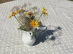 Ein schönes Wochenende für Euch Alle (Sockenhummel) Tags: wahlsdorf kreativbude blumenvase blumen schatten sommer blumenstraus