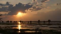 *** (pszcz9) Tags: przyroda nature natura polska poland woda water parknarodowy nationalpark ujściewarty wartamouth pejzaż landscape zachódsłońca sunset sun słońce słońsk sony a77 beautifulearth