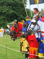 DSCF3898 (SierPinskiA) Tags: ruffordabbeycountrypark rufford knightsofnottingham fujixs1 jousting medieval horse knights goldeneagle falcon