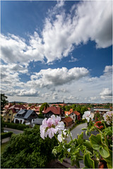 Flowers & Clouds (:: Blende 22 ::) Tags: flower blumen geranien germany german deutschland thuringia thüringen eichsfeld landkreis eic heilbadheiligenstadt heiligenstadt sonne sun clouds cloudy canoneos5dmarkiv sky himmel licht light wolken vista ef1740mmf4lusm