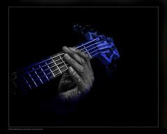 Blue Bass b&w hands (OLD MAN WITH A CAMERA) Tags: timmwalker bass empresstheatre