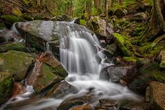 Mason Creek (KPortin) Tags: oldmasonlaketrail waterfall creek explore