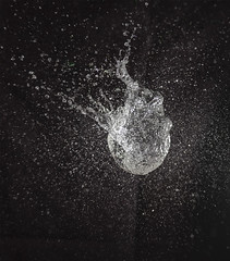 Busted (Beth Reynolds) Tags: pop bust balloon water action fast burst create