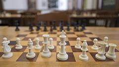 All the King's Men (vtom61) Tags: chess mechanicsinstitutelibrary fujixt20 fujixf16mm14 sanfrancisco california chessroom chessboard