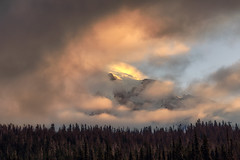Mount Rainier Morning Drama (optimalfocusphotography) Tags: mountrainier summer landscape sunrise nature nationalpark trees sky fog mountain usa washington clouds