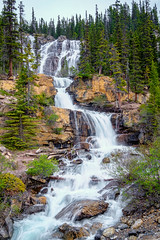 Tangle Creek Falls (KJRphotoz) Tags: waterfall tree wood forest serene canada canadianrockies landscape alberta jasper tanglecreekfalls ngc